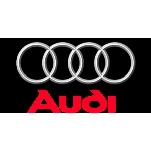 DefenTime PRO для Audi
