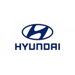 DefenTime PRO для Hyundai